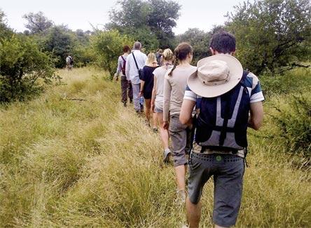 »Erlebnis pur: Abenteuer Krüger Park Reise Südafrika«