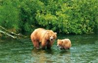 »Alaska & Yukon Highlights Mietwagenreise«