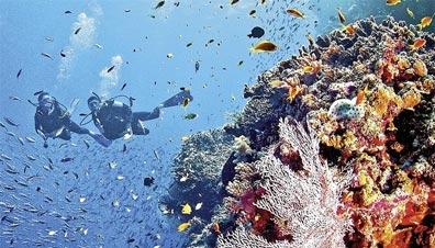 »Höhepunkte Australiens: Reise zum Great Barrier Reef«