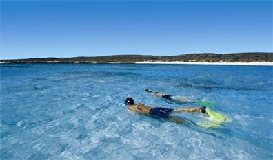 »Schnorcheln am Ningaloo Reef in Westaustralien«
