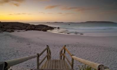»Australien Reise: Monkey Mia Shark Bay Pelikane«