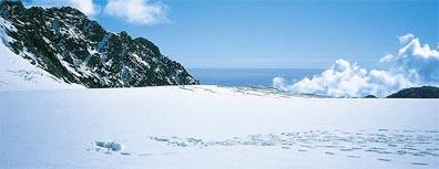 »Bed & Breakfast Neuseeland: Franz Josef Glacier«