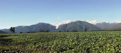 »Best of New Zealand: Mt. Tasman und Mt. Cook, Westland NP«