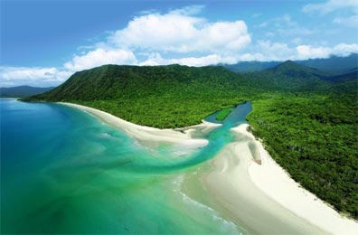 » Best of Queensland Mietwagenreise: Daintree Nationalpark «