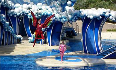 »SeaWorld Blue Horizons Show«