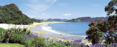 »Hot Water Beach, Coromandel-Halbinsel Neuseeland«