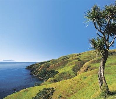 »Bed&Breakfast in Neuseeland: Coromandel-Halbinsel«