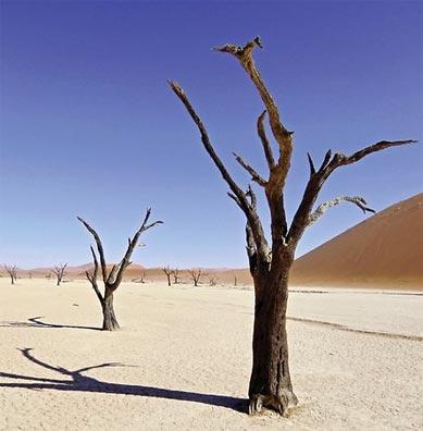 »Dead Vlei - Erlebnis Namibia mit Kaokoland«