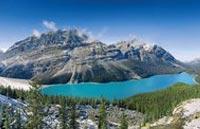»Die Natur Westkanadas hautnah«