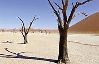 »Erlebnis Namibia mit Kaokoland - Reise durch Namibia«