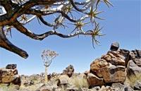 »Facettenreiches Namibia - Rundreise Namibia«