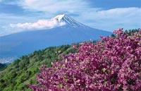 »Fuji - Im Land der aufgehenden Sonne«