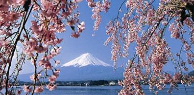 »Eines der Wahrzeichen Japans: der Berg Fuji-san«