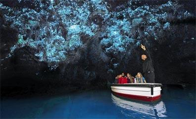 »Mietwagenreise Nordinsel Neuseeland: Glühwürmchen Waitomo«