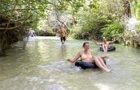 »Grand Australia Rundreise: Eli Creek, Fraser Island«