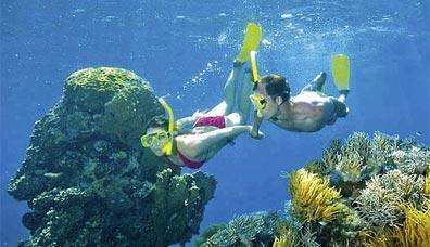 »Känguru-Hüpfer: Reise zum Great Barrier Reef«