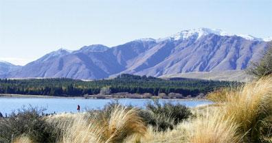 »Große Neuseeland Rundreise: Lake Tekapo«