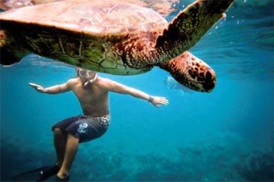 »Hawaii für Abenteurer: atemberaubend schöne Natur«