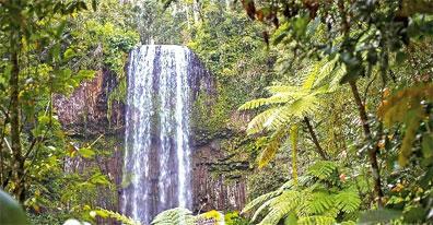 »Höhepunkte der Pazifikküste ab Sydney bis Cairns«