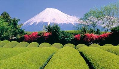 »Rundreisen Japan: Blick auf den Fuji / Fujisan«