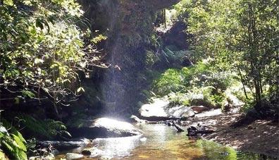»Best of Australia: Blue Mountains Nationalpark«
