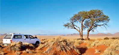 »Mietwagenreise Namibia: Dünen, Himbas & Etosha«