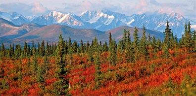 »Mystisches Alaska & Kanada: Studienreise Nordamerika«