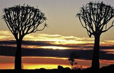 »Namibia Entdeckungstour: Mietwagenreise 16 Tage / 15 Nächte«