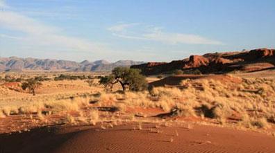 »Namibia Kalahari - Erlebnisreise Namibia«
