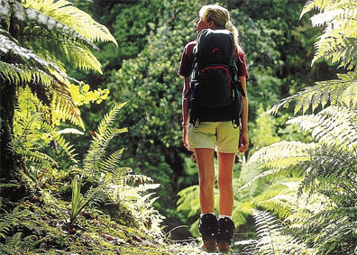 »Neuseeland wanderbar aktiv entdecken«