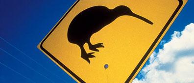 »Neuseelandsafari: 23-Tage-Erlebnisreise Neuseeland«