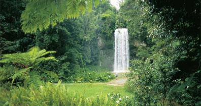 »Ostküste auf eigene Faust: Milla Milla Falls, Atherton«