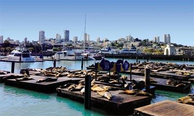 »Der Südwesten & New York: Pier 39 San Francisco«