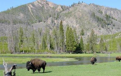 »Naturwunder der Rocky Mountains: 16 Tage USA & Kanada«