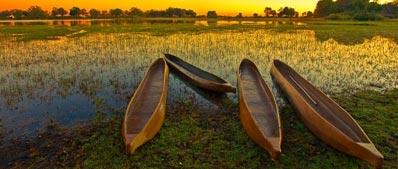 »Eine spannende Reise ins Okavango-Delta«