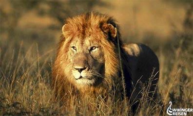»Geführte Wander- & Erlebnisreise durch Südafrika«
