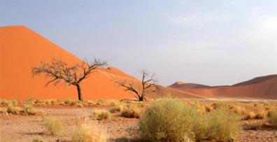 »Günstige Namibia Rundreise - Namibia erleben«