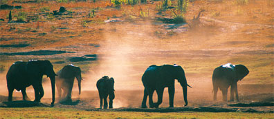 »Südafrika und Mauritius: 18-Tage-Erlebnisreise«