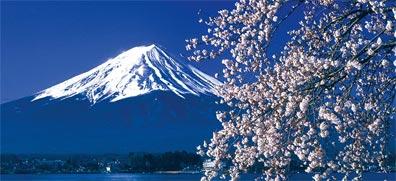 »Sushi für Anfänger: Eine Entdeckungsreise durch Japan«