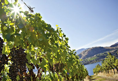 » Reise ins Okanagan Valley - The Great Outdoors «