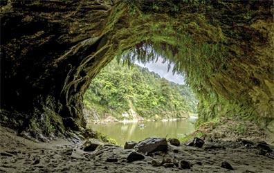 »Neuseeland natürlich entdecken: Whanganui Nationalpark«
