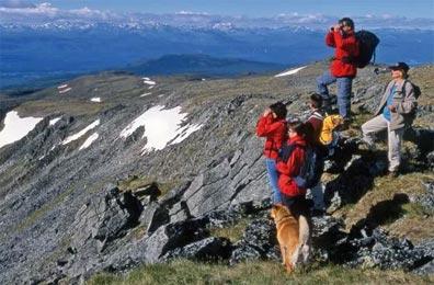 »Durch die Wildnis des Yukon und Alaskas 15 Tage Wanderreise«