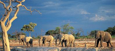 »Zuhause in Namibia: Entdeckungstour Namibia«