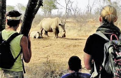 »Südliches Afrika Rundreise - Southern Africa Camp Safari«
