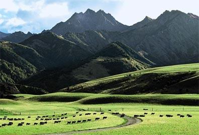 »Spektakuläres Neuseeland: bei Lake Wanaka«