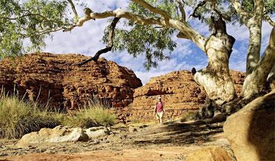»Australiens Glanzpunkte: Kings Canyon, Watarrka Nationalpark«
