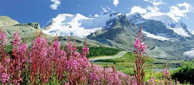 »Icefields Parkway - Rundreise British Columbia und Alberta«