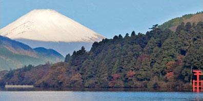 »Japanische Tradition hautnah erleben«