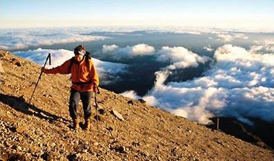 »Neuseeland mit Tagestouren in den schönsten Nationalparks«