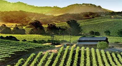 »Mythos des Westens: Kaliforniens Weinlandschaft Napa Valley«